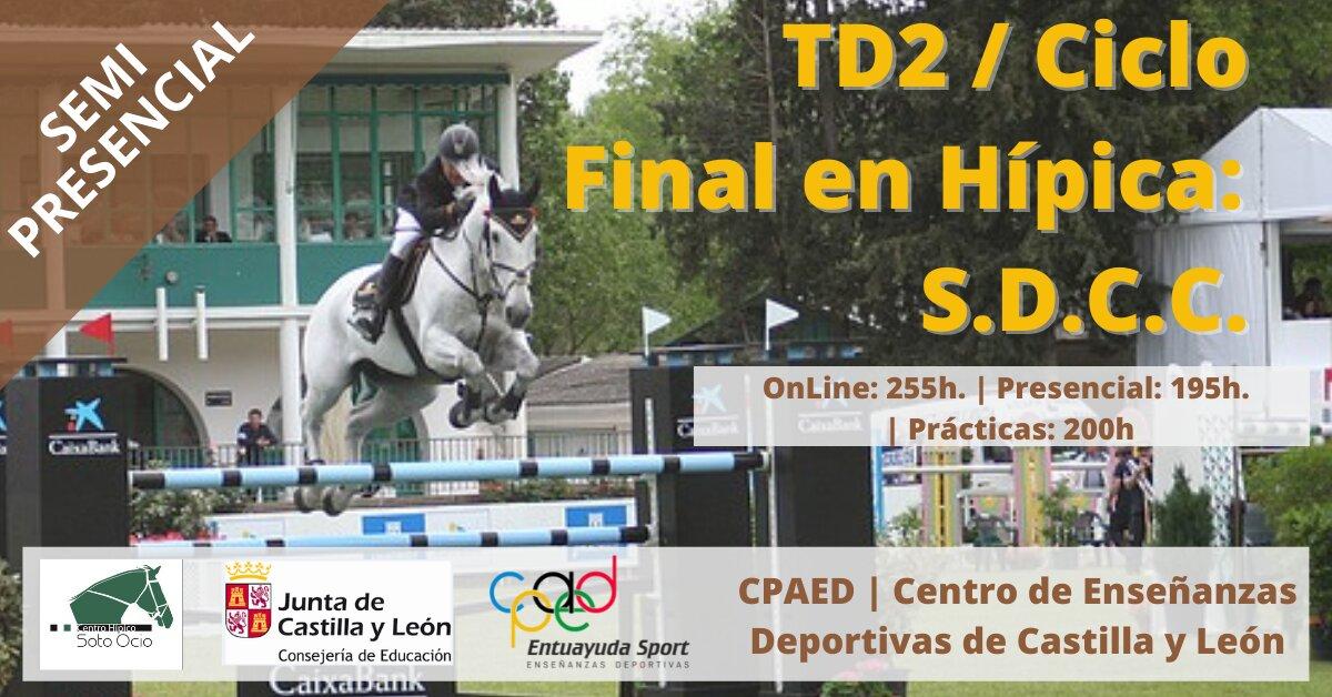 Ciclo Final de Hipica Salto semipresencial